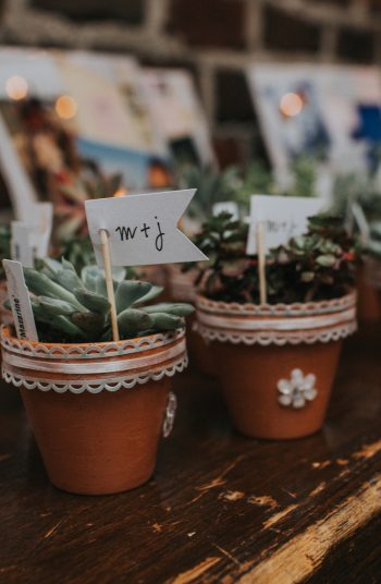 Don't know what wedding favors to give out on your big day? Here are 9 unique wedding favors that your guests are guaranteed to fall completely in love with. Try giving them little succulents to take home.
