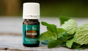peppermint oil for lips that look full. Wedding day makeup hacks.
