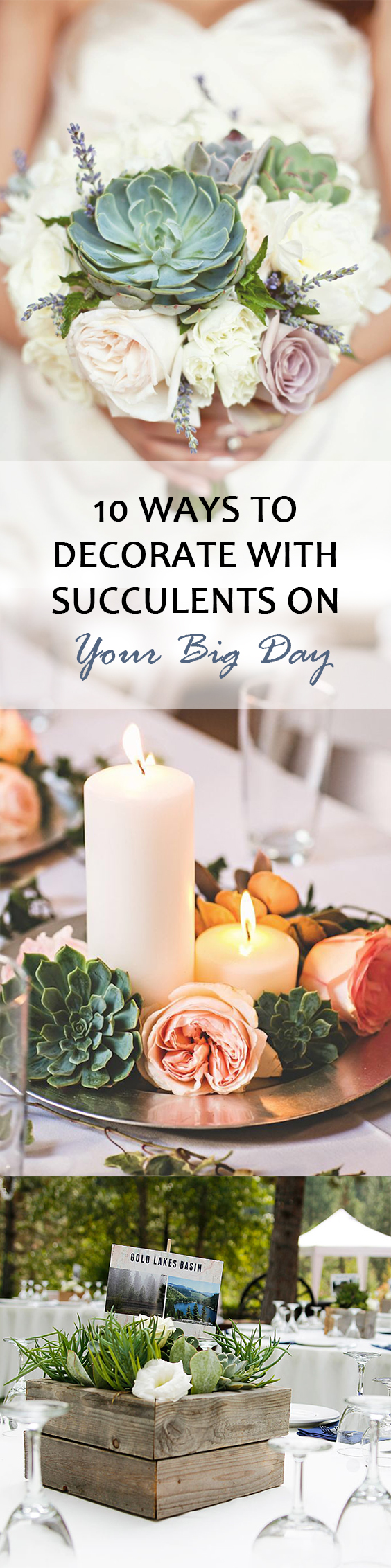 Decorate with Succulents | How to Decorate with Succulents | Wedding Day with Succulents | Succulents | DIY Succulent Decorations | DIY Wedding Succulent Decor | Succulent Wedding | Succulent Decorations