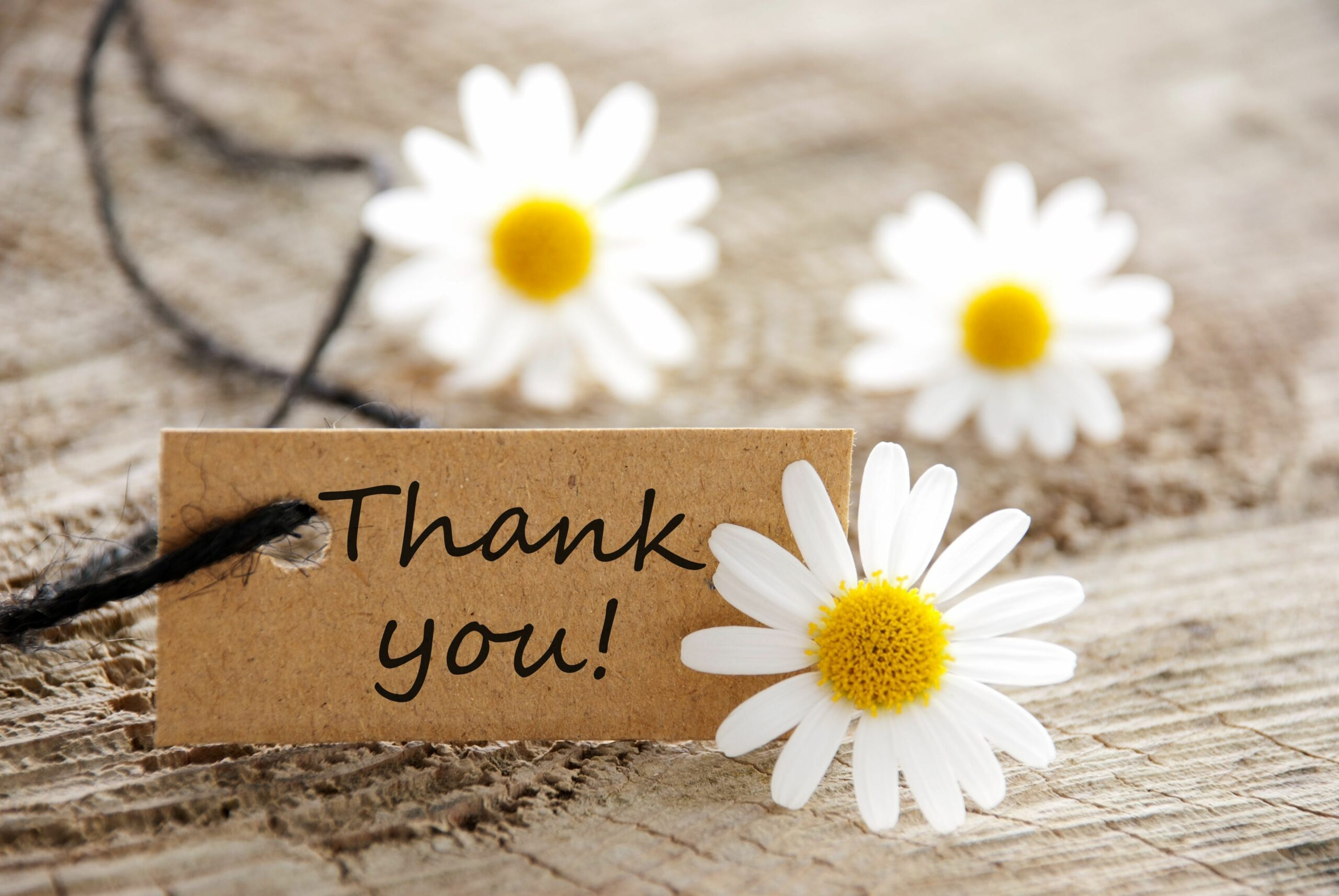 thank you tag with daisies-wedding thank you card wording