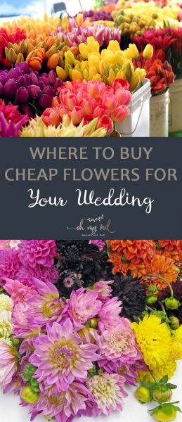 Where to Buy Cheap Flowers for Your Wedding| Wedding Flowers, Inexpensive Flowers, Wedding, Save Money, DIY Wedding #CheapWedding #Wedding #Flowers