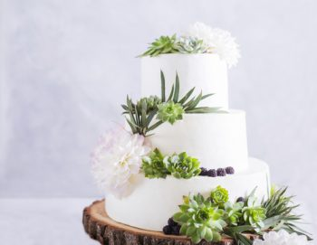 Succulents | Succulent Wedding | Wedding Decor: Succulents | Succulent Wedding Decorations | Wedding | Wedding Planning