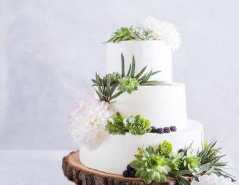 Succulents | Succulent Wedding | Wedding Decor: Succulents | Succulent Wedding Decorations | Wedding | Wedding Planning