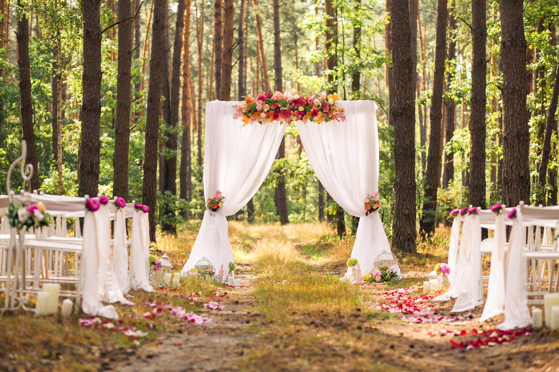 fall wedding backdrops   diy   diy fall wedding backdrops   wedding backdrops   diy wedding backdrops   fall wedding