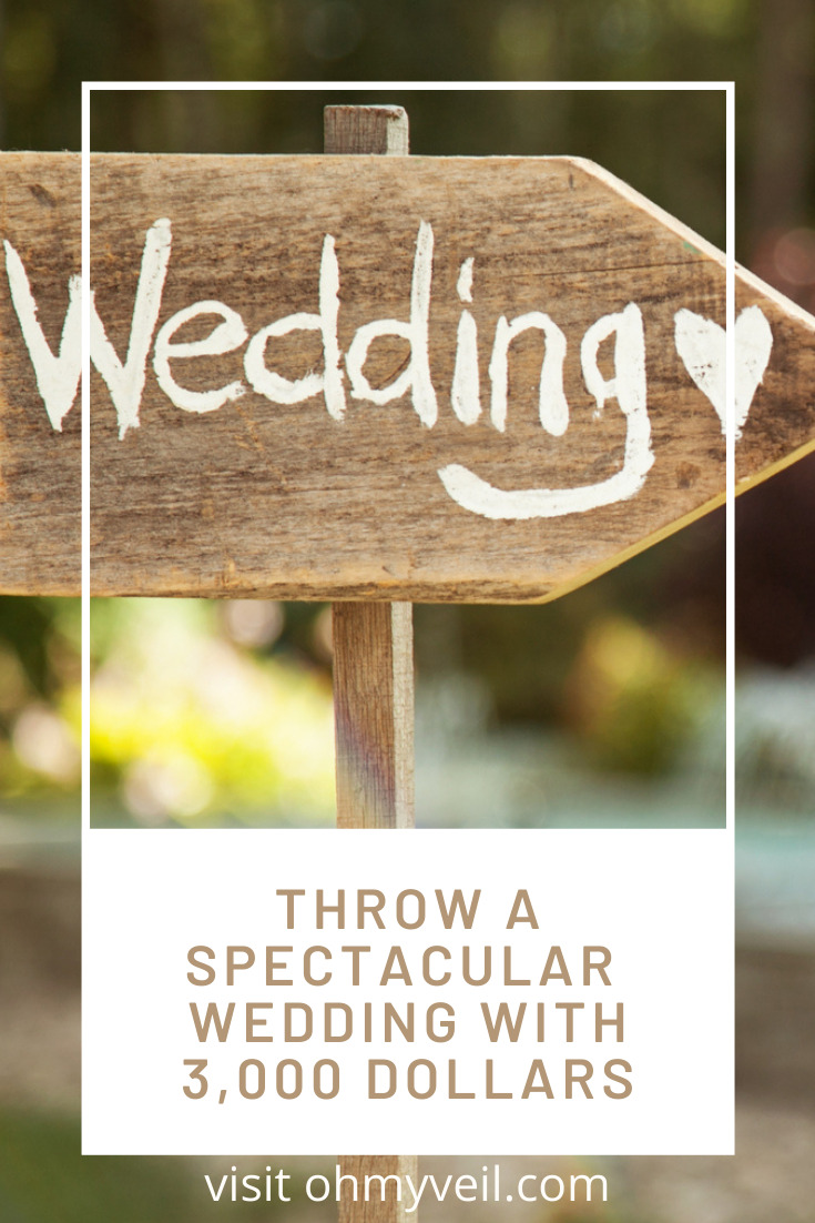 """Can you really pull off a nice wedding on a $3000 budget? Not without some good ideas and that's what I have to share with you: some creative budget wedding ideas that won't break the bank! But don't stress--they may be """"budget"""" ideas, but they don't have to be """"cheap?"""" #budgetwedding #budgetweddingideas"""